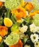 Цветочный колорит